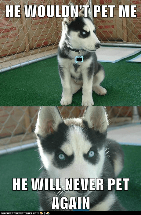 bite hands husky insanity pup Insanity Puppy Memes pet - 6400171520