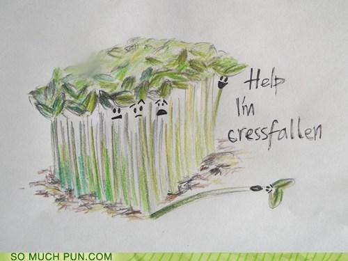 cress crestfallen homophone literalism similar sounding - 6400406272