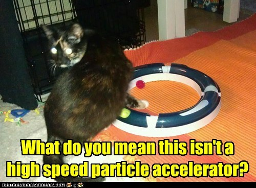 well, those physics lessons were a waste of time then What do you mean this isn't a high speed particle accelerator?