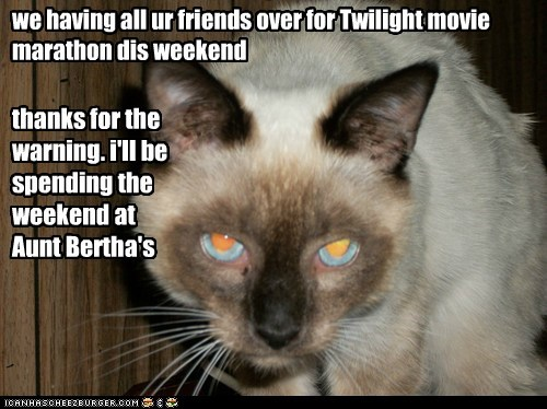 we having all ur friends over for Twilight movie marathon dis weekend
