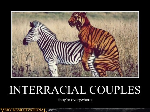 couple hilarious interracial tiger zebra