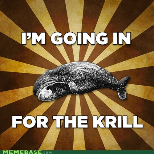 krill Memes puns whale - 6401022464