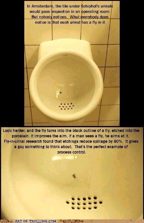 fly IRL peetimes urinal - 6401145856
