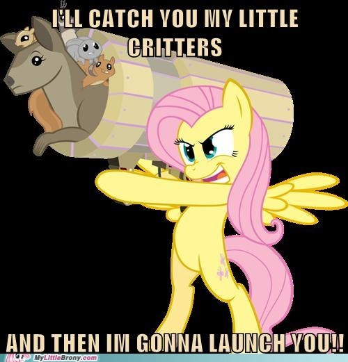 fluttershy launcher meme - 6402812416