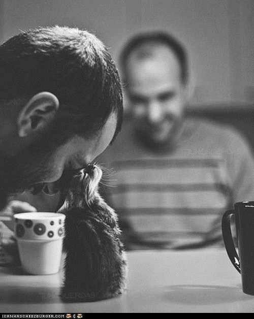 Cats,coffee,cyoot kitteh of teh day,head bump,heads,humans,kitten,mugs,tiny