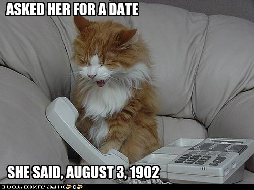 captions Cats date love phone rejected romance rude Sad - 6403229184