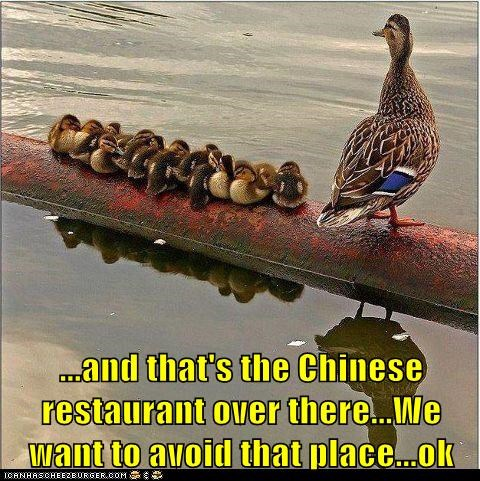 avoidance,chinese restaurant,dangerous,ducklings,ducks,parenting,plumb,sauce,warning