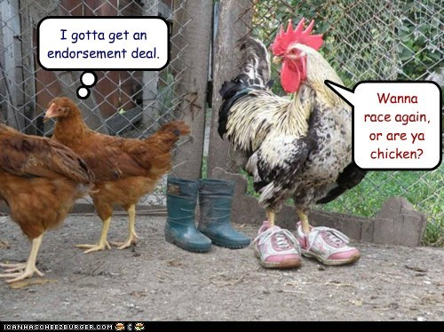 chickens cocky endorsement racing rooster shoes sneakers