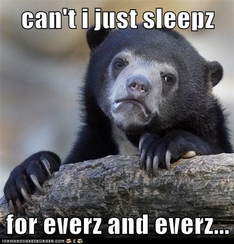 bear,forever,hibernation,sleep,tired,waking up