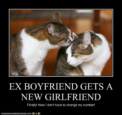 EX BOYFRIEND GETS A NEW GIRLFRIEND - Lolcats - lol | cat