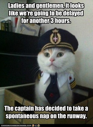 air Captain Kitteh delay plane runway - 6404404992