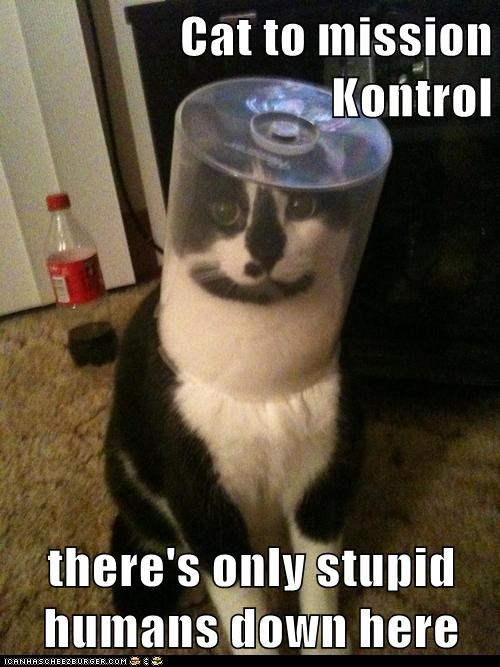 astronaut explorer lolcat mission control planet space - 6404984576