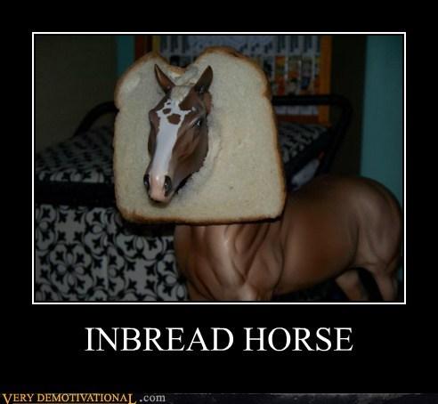 hilarious,horse,inbread,pun