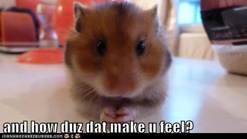 concerned,hamster,how does that make you fe,how does that make you feel,psychiatrist,therapist