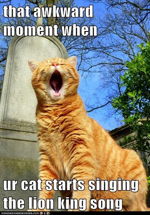 lion king song meme
