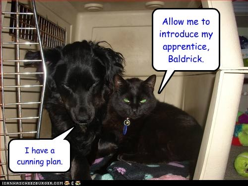 Allow me to introduce my apprentice, Baldrick. I have a cunning plan.