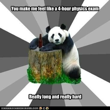 exam,Memes,panda,physics,Pickup Line Panda