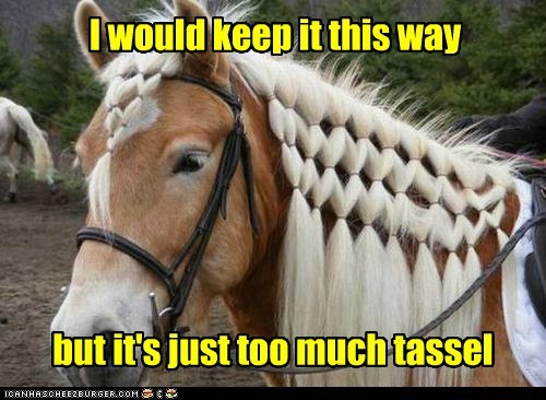 captions hair hassle horse keep mane puns tassel - 6406038016