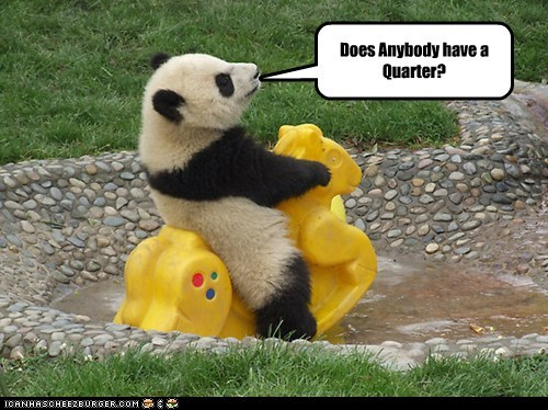 horse,panda,plastic,pond,quarter,ride,turn it on
