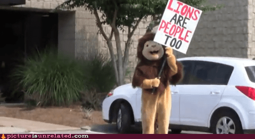 lions lions are people too human rights animal rights - 6407034880
