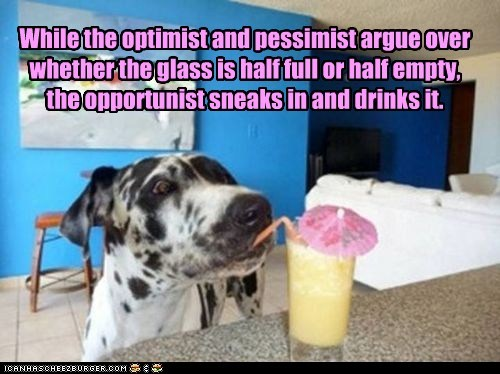 best of the week dogs drink great dane Hall of Fame opportunity pina coladas - 6407485184