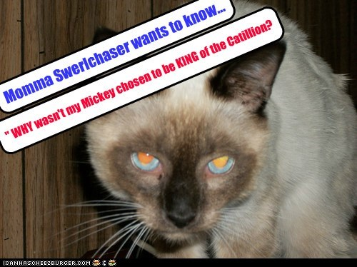 """Momma Swerlchaser wants to know... """" WHY wasn't my Mickey chosen to be KING of the Catillion?"""