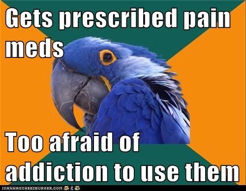 addiction,drugs,Memes,pain,Paranoid Parrot,pills,prescription