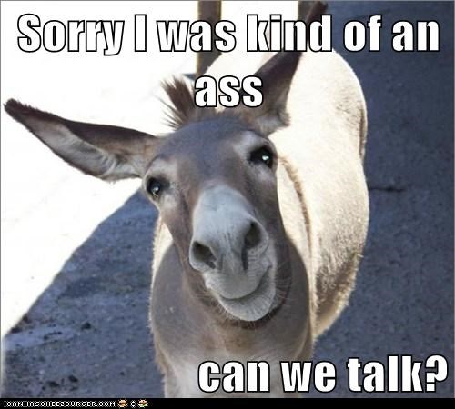 apology,ass,cant-help-it,donkey,pun,sorry,talk