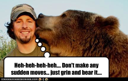 bear,keep still,licking,nervous,pun,scary