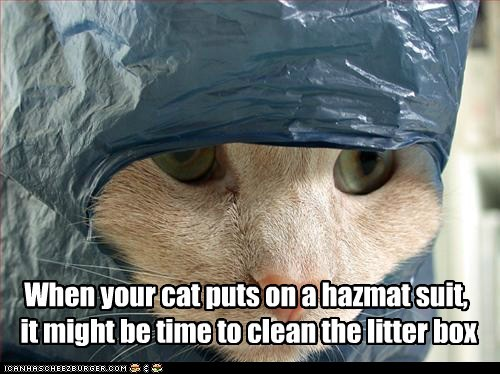 When your cat puts on a hazmat suit, it might be time to clean the litter box