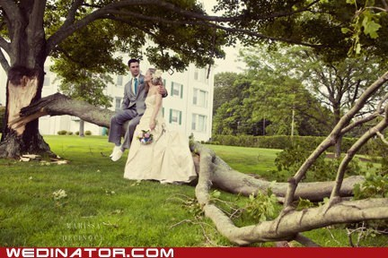 bride,funny wedding photos,groom,storm,tree