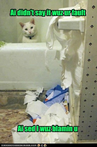 bathroom blame Cats fault shred toilet paper your fault - 6410326272