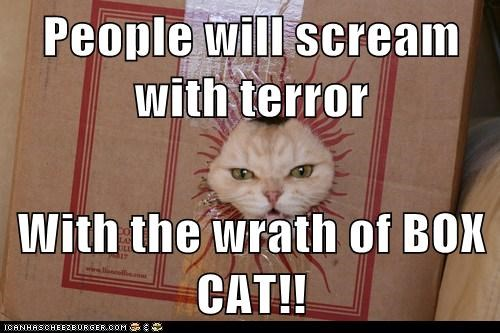 People will scream with terror With the wrath of BOX CAT