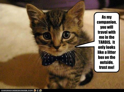 11th Doctor,best of the week,bow tie,bow ties are cool,caption,Cats,companion,doctor who,litter box,tardis
