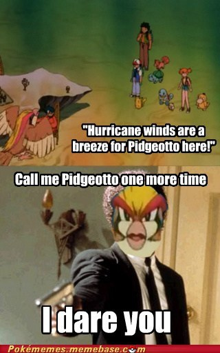 anime,i dare you,meme,Memes,pidgeot,pidgeotto