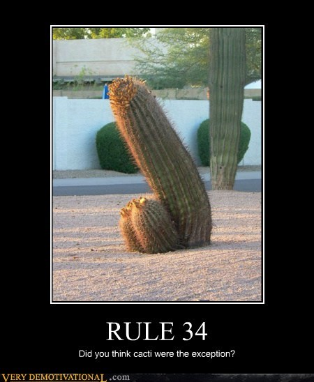cacti hilarious no exceptions Rule 34