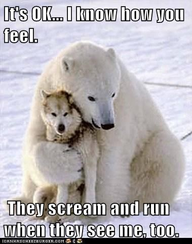 comforting,hug,its-okay,polar bear,scary,scream,wolf