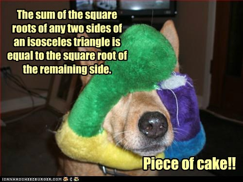 dogs genius piece of cake triangle what breed - 6411362304