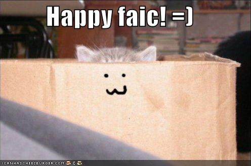 box face happy kitten lolcats lolkittehs - 641145600