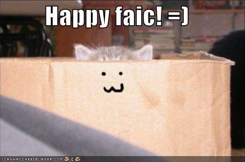 box face happy kitten lolcats lolkittehs - 641145600