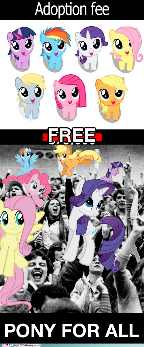 adoption cute free ponies ponies for all the internets - 6411667200