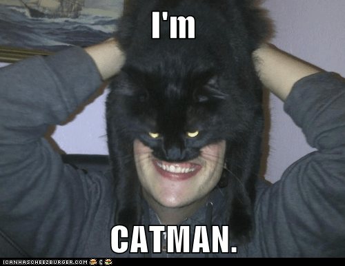 batman best of the week bruce wayne captions catman Cats face lolcats mask masks smile - 6411702528