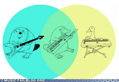 Chart graph guitar keytar piano platypus venn diagram - 6412497664