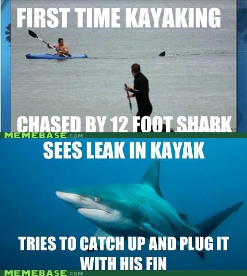 chase,fin,kayak,Misunderstood Mi,misunderstood mitch,shark