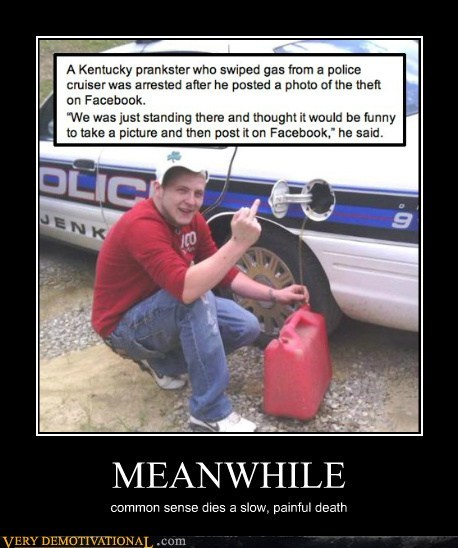 common sense cops idiots Meanwhile - 6412872448
