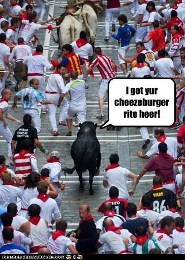 Cheezburger Image 6412924160