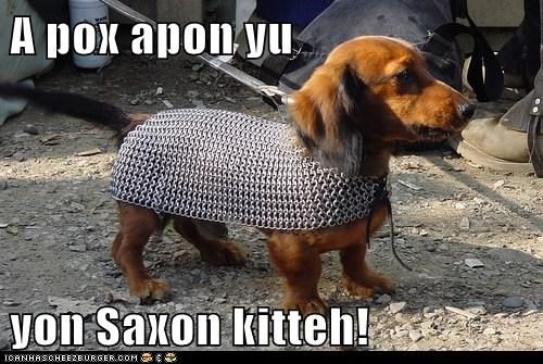 best of the week,chain mail,dachshund,dogs,dogs dressed up,Hall of Fame,knight,ren fair,saxony