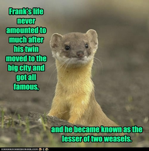 Frank's life never amounted to much after his twin moved to the big city and got all famous, and he became known as the lesser of two weasels.