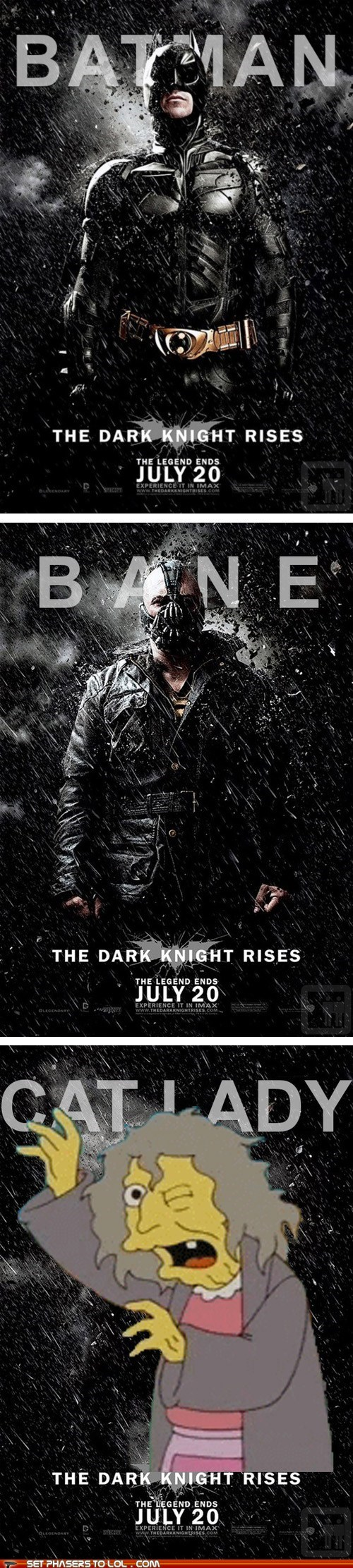 bane batman cat lady christian bale the dark knight rises the simpsons tom hardy - 6413726464