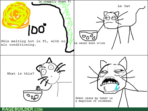 cat,hot,Rage Comics,sweet jesus have mercy